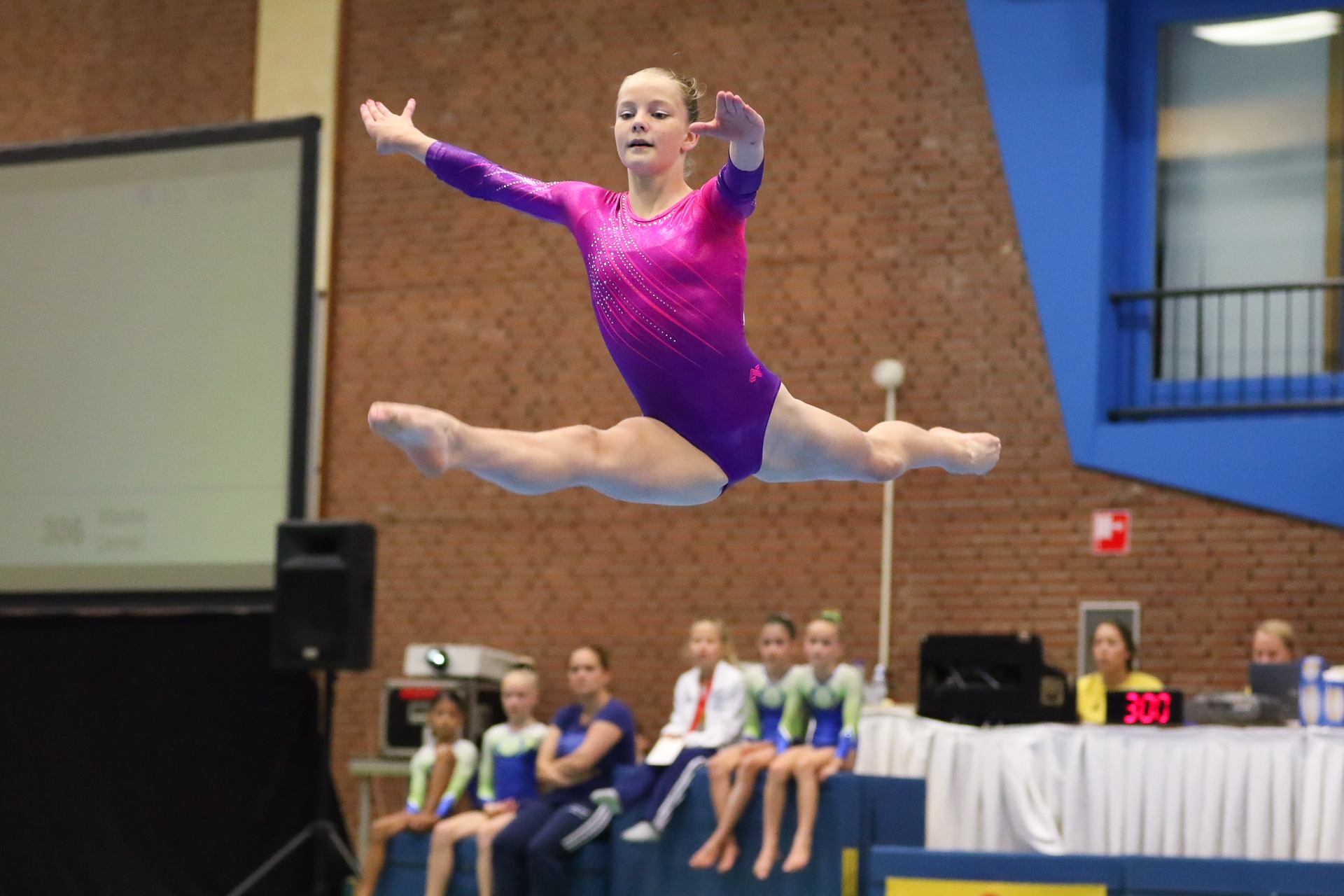A Look at the Different Types of Gymnastics